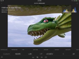 Screen shot of editing screen in Lightroom Mobile