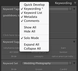 Image 3: To suppress the display of a panel, right click on the title bar of any panel in the sidebar and click on the name of the panel in the menu.