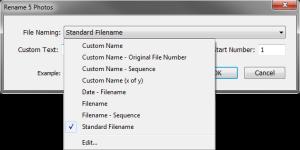 File Naming drop-down menu
