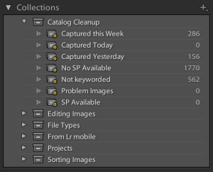 "Screenshot of the Collection panel displaying a Collection Set titled ""Catalog Cleanup"""