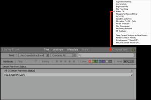 Screenshot of the filter bar and present menu